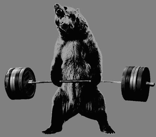 bear-deadlift-gray